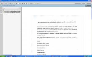 Pantallazo Acta 4